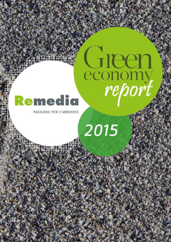 remedia_cover_report-2015