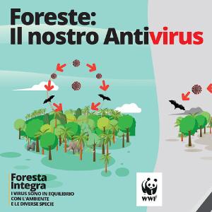 banner_report_wwf_pandemie e ecosistemi