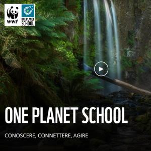 one planet schoool